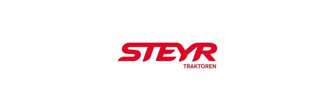 MOTOR STEYR